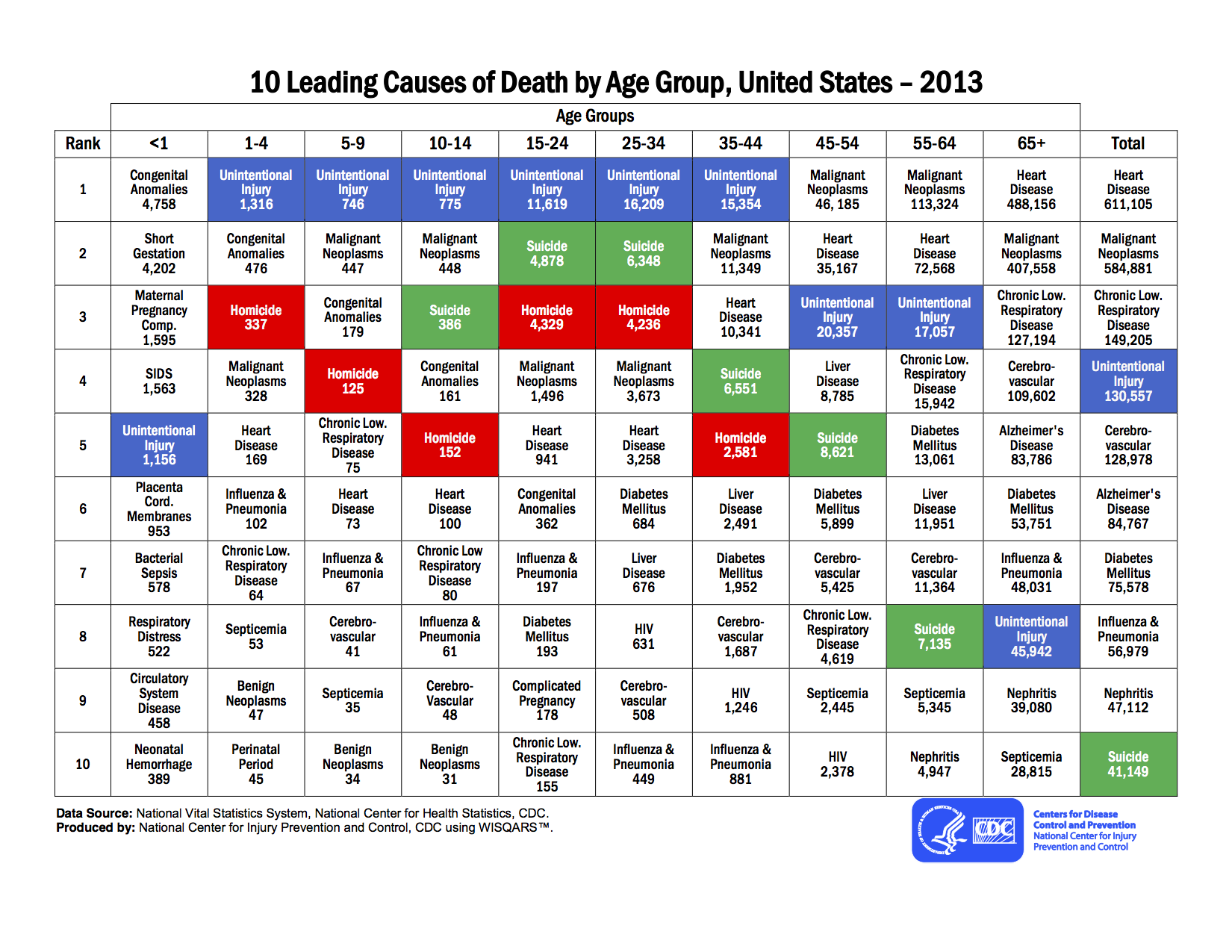 leading_causes_of_death_by_age_group_2013