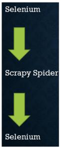 Selenium -> Scrapy -> Selenium