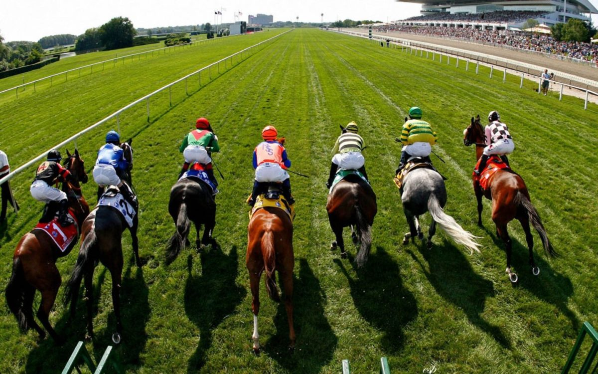 Betting on Horse Racing | NYC Data Science Academy Blog
